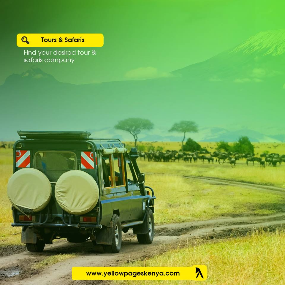 Tours and safari